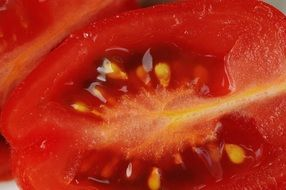 Tomatoes Sliced Macro