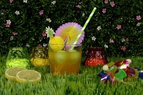 Cocktail for garden party