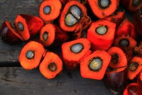 cut fruits of oil palm on wooden surface