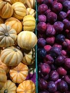 Picture of Pumpkins and Plums
