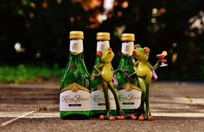 Frogs with Wine bottles Restaurant