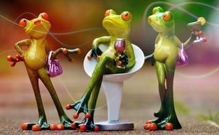 Funny frogs party time