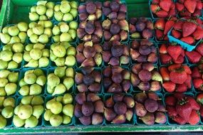fruit boxes in the market