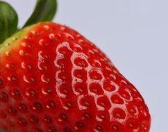 closeup of a strawberries