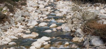 white round stones in a mountain river