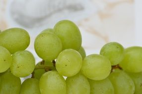 Grapes Fruits Healthy Fruit winegrowing