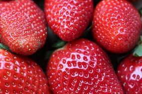 strawberry is a source of vitamins