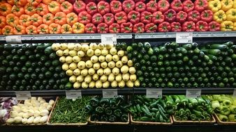 the department of vegetables at the supermarket