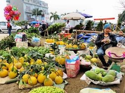 A lot of fruits on the viet man's bazar