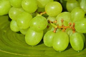 table Grapes Fruits Healthy