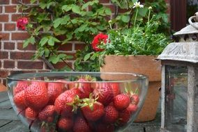 red strawberries in a glass bowl on the table