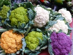 variety of colorful cauliflower