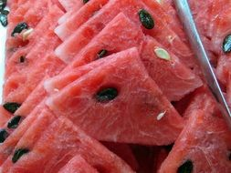 Red watermelon slices