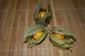 Three opened yellow healthy tasty physalis fruits