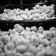 garlic in boxes in the market