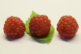 three Raspberries Fruits close