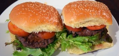 Picture of the Hamburgers