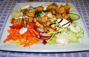 meat salad with vegetables on a white plate