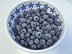 blueberries in the bowl