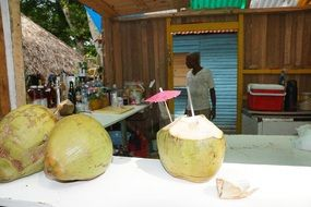 coconut drink in the Caribbean