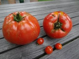 tomatoes of different sizes