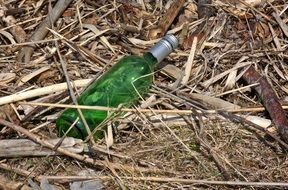 empty bottle among dry branches