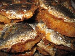 fried sardine fish on a plate
