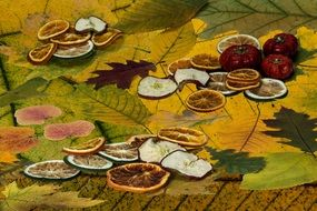 dried citrus slices on autumn leaves
