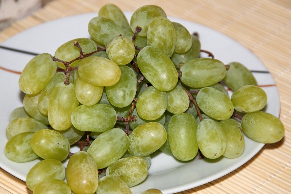 green Grapes on white plate closeup