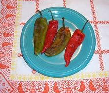fried hot peppers in New Mexico