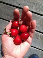 cherry berries on hand