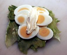 open sandwich with eggs and mayonnaise