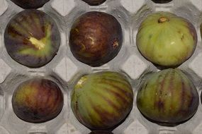 ripe figs for sale