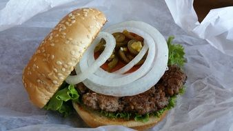 hamburger with white onions