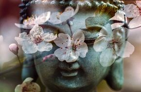 Buddha face and flowering tree