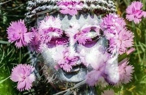 sacred face of buddha and pink flowers