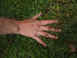 Dirty female hand on grass