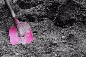 pink the handle of a shovel into the black earth