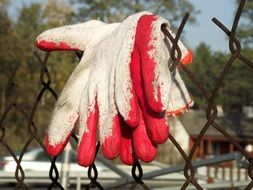 Working Gloves on rusty wire fence