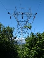 electric powerline in the forest