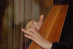 girl playing the celtic harp