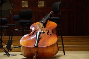 double bass on stage
