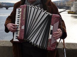 street musician plays the accordion