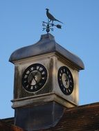 weather vane on the clock tower