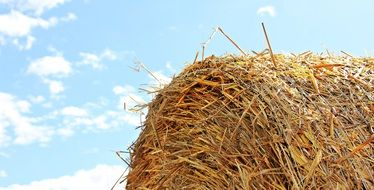 bale of straw under the sun