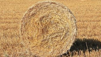 straw bale close up