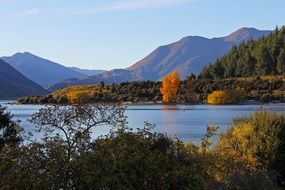 Beautiful mountains and autumn forest at wanaka Lake, new zealand