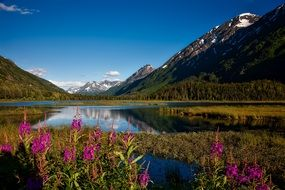 lake in Chugach national forest
