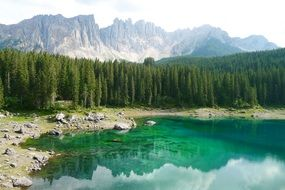 beautiful summer nature in Dolomites