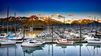 Picture of sailboats in Seward